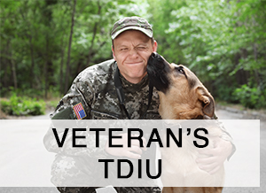 disabled veteran man in uniform with his dog